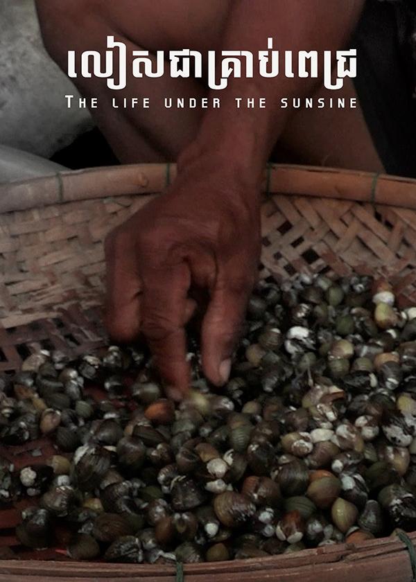 The life under the sunsine